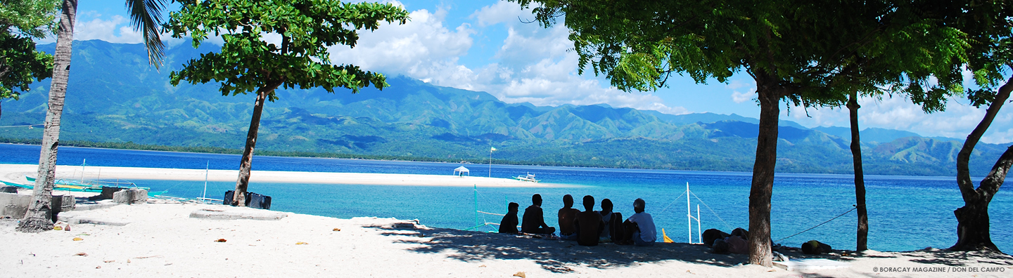People under the shade of a tree on a beach facing the mountains